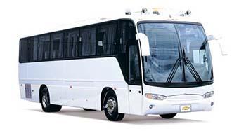 Big busesa 300